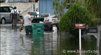 Eta deja lluvias torrenciales en oeste de Florida - teleSUR TV