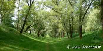 De Villeurbanne à Neuilly-sur-Marne, cinq parcs et jardins confinement compatibles - Le Monde