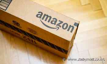 Amazon festive shoppers are warned to watch out for misleading reviews