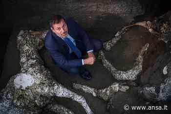 A Pompei il giallo dell'uomo col mantello - Spettacolo - Agenzia ANSA
