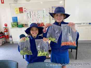 Bundaberg Pick of the Crop for healthy eating pilot – Bundaberg Now - Bundaberg Now