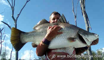 Plenty of fish on the chew – Bundaberg Now - Bundaberg Now