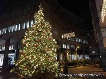 Luminarie 2020: Stelle, igloo ed abeti illuminano la città di Busto Arsizio - Sempione News
