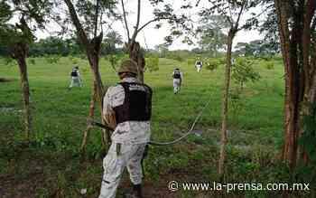 Guardia Nacional y Pemex localizan toma clandestina en Huimanguillo - La Prensa