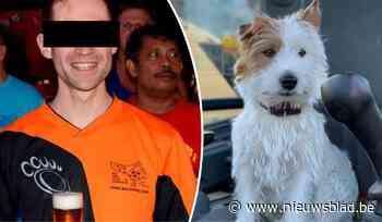"""Jogger opgepakt die hondje Dribbel doodstak: ultraloper, klimaatexpert en """"natuurvriend"""" bekent de feiten"""