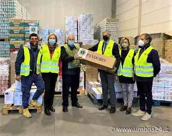 Natale più vicino con le donazioni del Lions club di terni al Banco alimentare - Umbria 24 News
