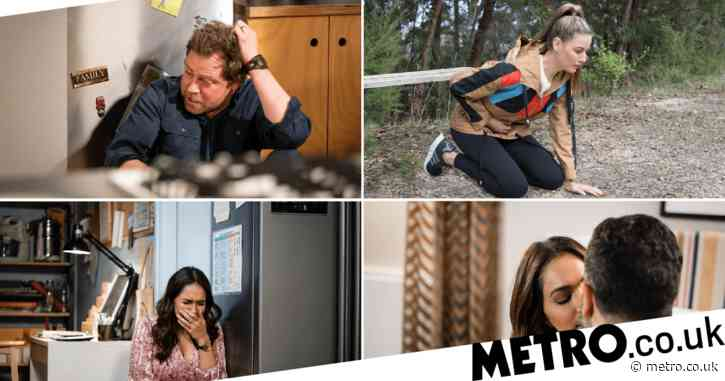 Neighbours spoilers: Dipi and Shane affair leaves lives shattered