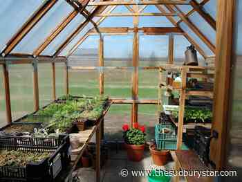 The Cullens: Greenhouses for when the snowbirds don't fly