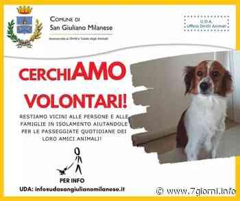 San Giuliano Milanese: il Comune cerca volontari per curare i cani di chi è in quarantena - 7giorni