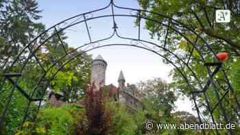 Burg Henneberg: Magnet für Kulturfans: Hamburgs Ritterburg steht vor dem Aus