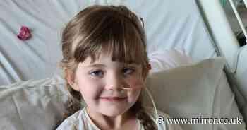 Family's bid to take girl, 5, suffering from untreatable tumour to Disneyland
