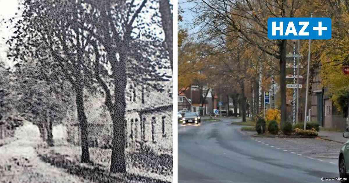 Isernhagen: Hannoversche Straße war einst Lindenallee - Hannoversche Allgemeine