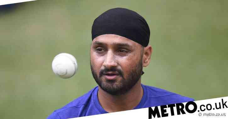 Harbhajan Singh backs India to beat Australia despite Virat Kohli absence