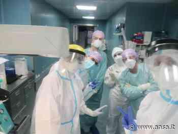 Positiva dà alla luce due gemelli in ospedale Chieti - Agenzia ANSA