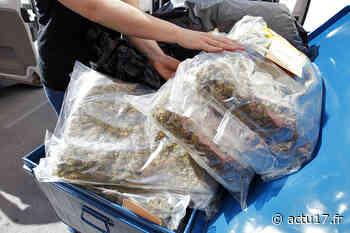 Montfermeil : Une quinzaine de fusils, des armes de poing et plus de 8 kg de cannabis saisis chez un homme - Actu17