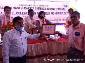 World Fisheries Day 2020 observed in a befitting manner in Cachar - Sentinelassam - The Sentinel Assam