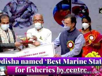Odisha named 'Best Marine State' for fisheries by centre - India TV News