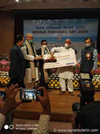 GOI celebrates World Fisheries Day 2020, Assam bags four awards in fisheries sector - Barak Bulletin