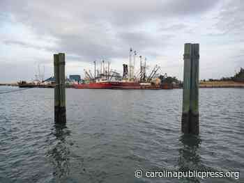 Lawsuit: 'Abject failure' by NC marine fisheries division - Carolina Public Press