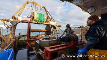 World Fisheries Day: 'Time to act to protect fishers' - Vatican News