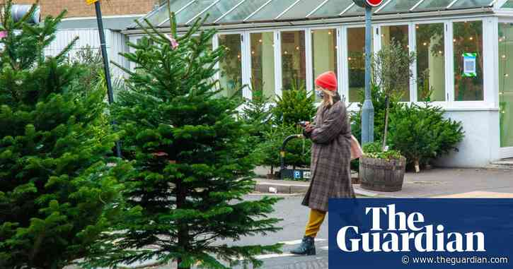 Christmas tree sellers allowed to reopen in England despite lockdown