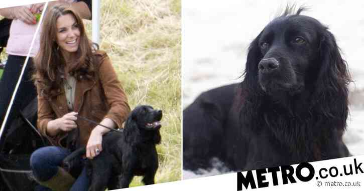 William and Kate share heartbreak as 'dear' dog Lupo dies