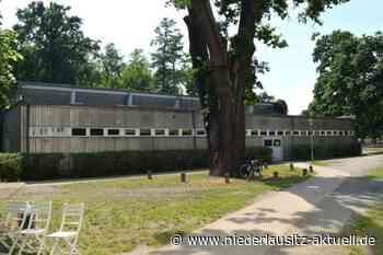 Turnhalle in Elsterwerda für 450.000 Euro saniert - Niederlausitz Aktuell - NIEDERLAUSITZ aktuell