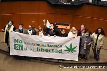 Recomendamos también: Legalizar en serio, por Yuriria Sierra - Etcétera