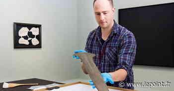 Il trouve des armes de l'Âge de bronze à la cueillette aux champignons - Le Point