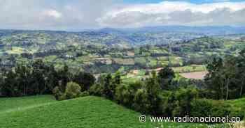 Ruta agrícola por Nariño en el municipio de Gualmatán - Radio Nacional de Colombia