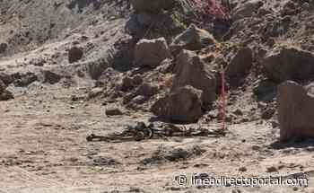 Hallan dos osamentas en cribas de San Pedro, Navolato - Linea Directa