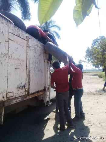 Intensifican campaña de descacharrización en Navolato - Extraoficial.mx