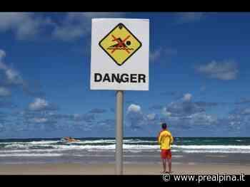 Australia: bagnante ucciso da squalo - La Prealpina