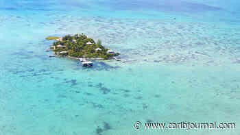Belize Has a New Tourism Minister Caribbean Journal - Caribbean Journal