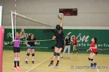 Capta talento Virtus Guanajuato en los try outs 2020 - Deporte Digital MX