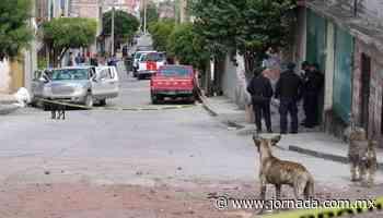 Guanajuato, la entidad más violenta durante octubre: SESNSP - La Jornada