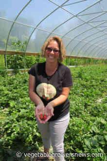 Grant helps West Virginia farm test strawberry planting dates