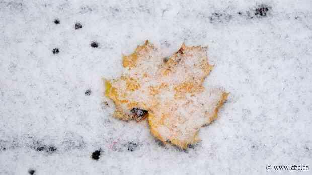 Snowfall warnings over in Ottawa-Gatineau region - CBC.ca