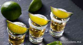 Pandemia no detiene al tequila; exportación creció 13.5% en 2020 - Puente Libre La Noticia Digital