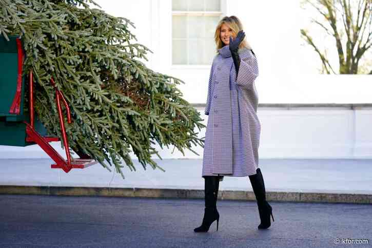 White House Christmas Tree arrival, presidential turkeys kick off holiday traditions in DC