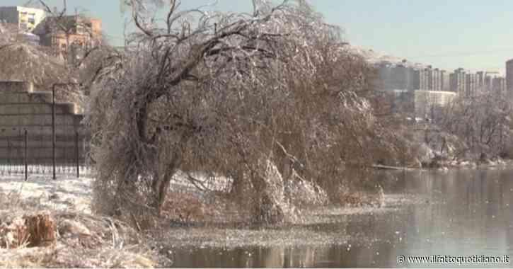 Un'ondata di gelo colpisce la città russa di Vladivostok: il paesaggio avvolto dal ghiaccio – Video