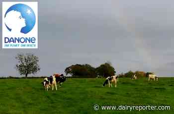 """Up to 2,000 jobs to go as Danone reveals plans to """"reinvent itself"""""""