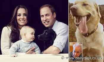 As Kate and William mourn their dog Lupo, JOHN BANVILLE on the magical memories of his own companion