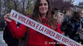 Alice Parma insulti sessisti: rimosse le scritte della vergogna - il Resto del Carlino
