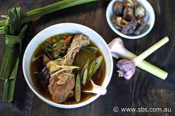 Steamed duck, winter melon and shiitake soup