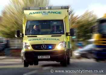Doctor, 60, died at home near Horsham - West Sussex County Times