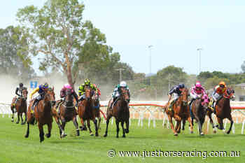 12/11/2020 Horse Racing Tips and Best Bets – Wangaratta - Just Horse Racing