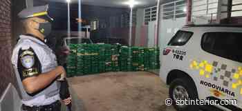 Polícia Rodoviária apreende 629 quilos de maconha em Teodoro Sampaio - SBT Interior