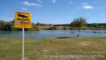 ¡Precaución; zona de lagartos!: señalamientos en Piedras Negras - El Siglo de Torreón