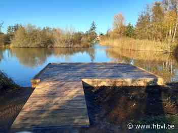 Vlonderterras en extra bomen in park Den Dijk - Het Belang van Limburg